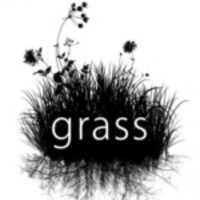 GRASS Holiday Party
